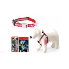 Camon Vision - светещ нашийник, за кучета с обиколка на врата 40 - 60 см.