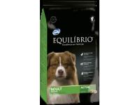 Equilíbrio Adult Medium Breeds /за израснали кучета средни породи 15+3 кг