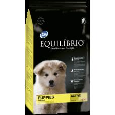Equilíbrio Puppies Medium Breeds /за подрастващи кученца средни породи/-15+3кг