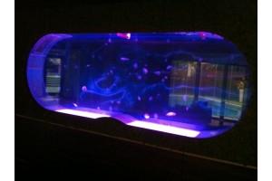 Аквариуми за медузи