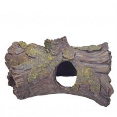 Декоративен корен