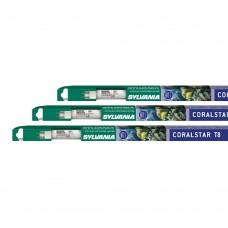 Sylvania Coralstar T8 18W 60cm Lux