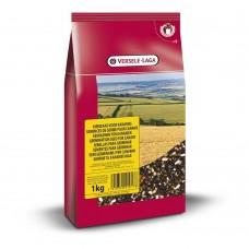 Versele Laga Germination Seeds Canary - семена за покълване за канари 20 кг.
