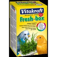Vitakraft bio box - смес от прясна детелина, здравословен  кресон и различни треви   40 гр .