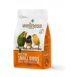 Храна за средни папагали
