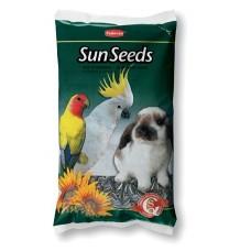Padovan Sun seeds - слънчогледови семки за папагали и гризачи 500 гр.